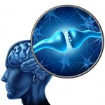 Adults Over 50 – Enhancing Brain Health