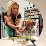 Pet Spending Spree: All Time High