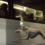 Greyhound: 100 year Anniversary