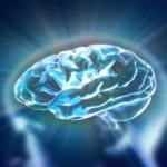 Nourishing Memory and Brain Function