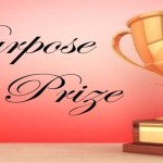 A  Purpose Prize in Retirement