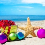 Holiday Tips for Baby Boomers and Loved Ones