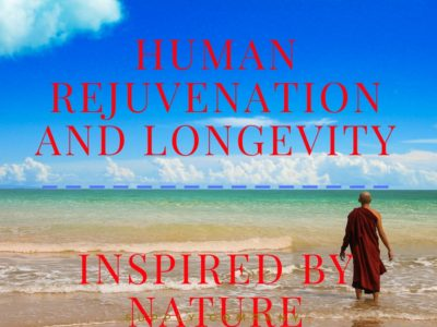 Human Rejuvenation and Longevity – Inspired By Nature
